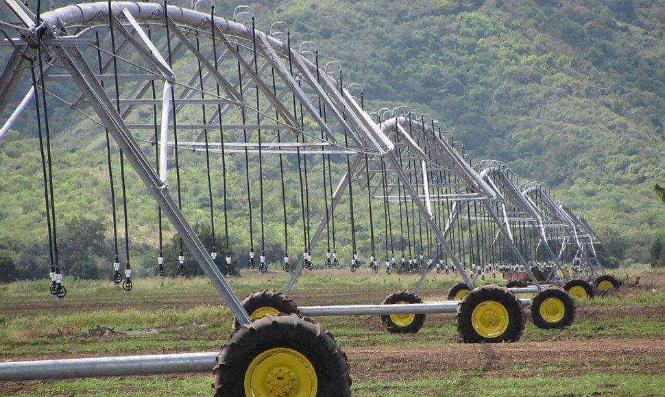 Riego agrícola...