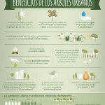 FAO-Infographic-UrbanTrees-es