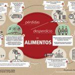 Food loss-food waste-highres-es_