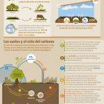 SUELOS AYUDAN A COMBATIR CAMBIO CLIMATICO