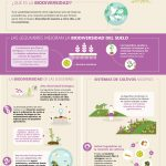 FAO-Infographic-IYP2016-5-Biodiversity-es
