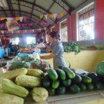 Mercado-campesino-750x500