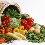 bio_agricultura2