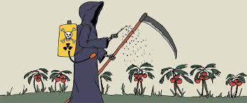 no a los agroquimicos